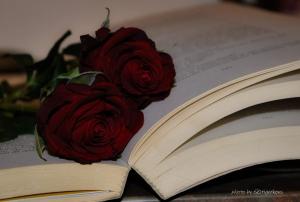 Outros/Gosto do cheiro dos livros! (ler (sfv)