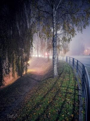 / Noite de nevoeiro..