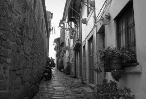 /Rua das Aldas