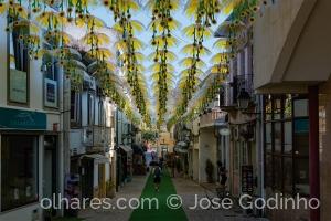 Fotografia de Rua/Águeda - tem as ruas mais bonitas do mundo 1