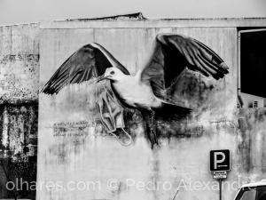 Fotografia de Rua/Mural em Ovar