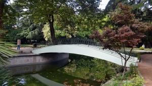Paisagem Natural/Jardins do Palácio de Cristal