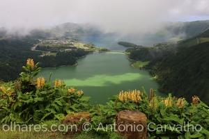 Paisagem Natural/Dia Mundial da Fotografia (c/desc)
