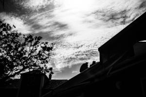 Paisagem Urbana/Contra-luz urbano