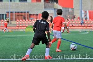 Desporto e Ação/ENTUSIASMO COM O FUTEBOL