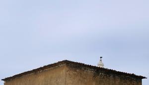 Gentes e Locais/O Catavento da Igreja...
