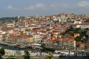 /Um olhar para o Porto