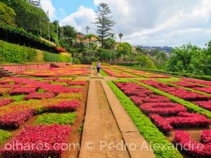 Gentes e Locais/Jardim Botânico da Madeira