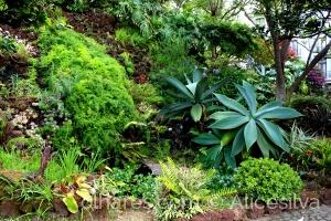 Outros/Jardim ............