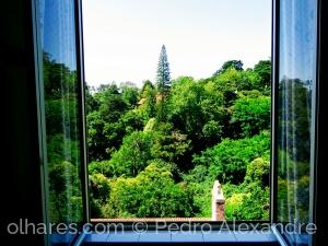 Paisagem Natural/Da minha janela em Sintra