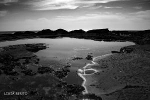 Paisagem Natural/a baía