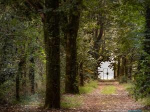 /O portal do Outono