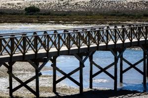 Paisagem Natural/A ponte de madeira...