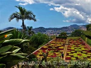 /Jardim Botânico do Funchal