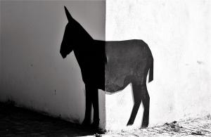 Gentes e Locais/Sol e sombra