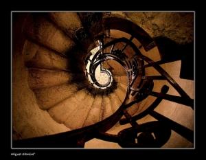 /Step by Step...