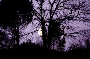Paisagem Natural/porque te escondes lua