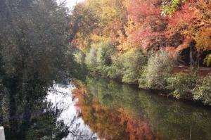 Paisagem Natural/reflexos outono