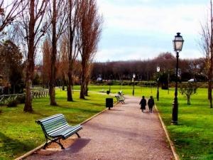 Paisagem Urbana/No Parque