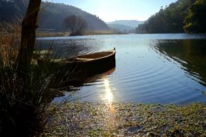Paisagem Natural/Barco solitário