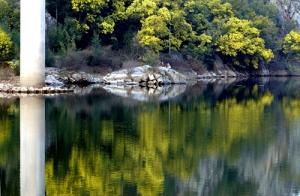 Paisagem Natural/Rio Mondego - Penacova