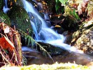 /Água fonte da vida