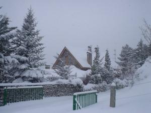 /Tudo calmo, ouvindo o som da neve a cair.