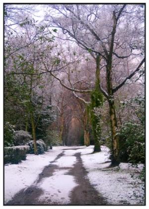 /A Winter's Tale