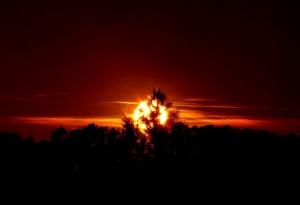/por do sol XLIV