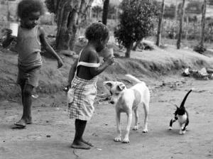 /Um click do cão e do gato de Leonara
