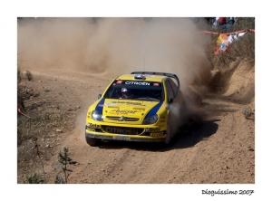 Desporto e Ação/Rally de Portugal 2007