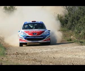 Desporto e Ação/Peugeot 207 S2000