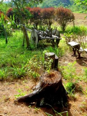 Paisagem Natural/O antigo carro de boi