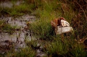 /pisando no molhado