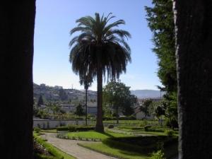 /Jardim