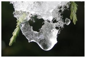 /O gelo que me estremece...