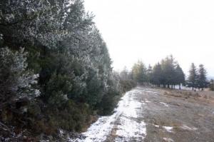 /Paisagem de Inverno II
