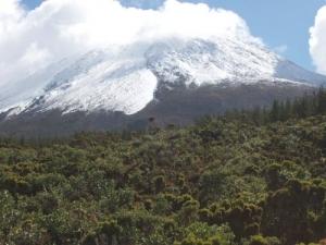 /Cai neve no Pico...
