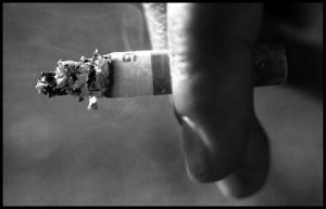 /Smoke