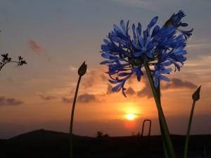 Outros/Pôr do Sol nos Açores