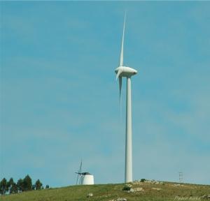 Paisagem Natural/Concorrência pelo vento.