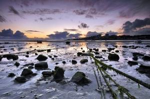 Paisagem Natural/Restos da maré
