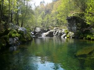 Paisagem Natural/O rio da minha aldeia...