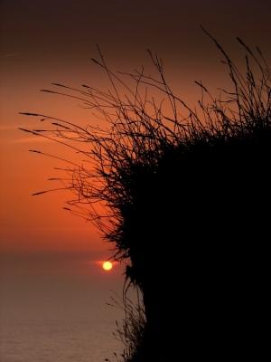 Paisagem Natural/Quando a noite...