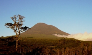 Paisagem Natural/A montanha...