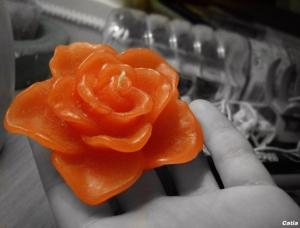 Macro/Flor de cera