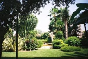 Paisagem Natural/Jardim Encantado
