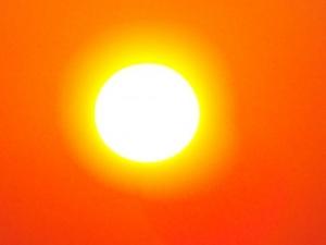 /Sol de Fevereiro