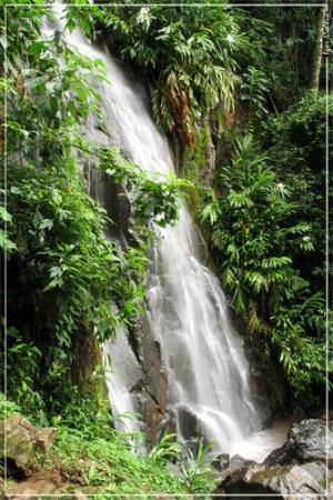 /Cachoeira dos Macacos - Brotas/SP