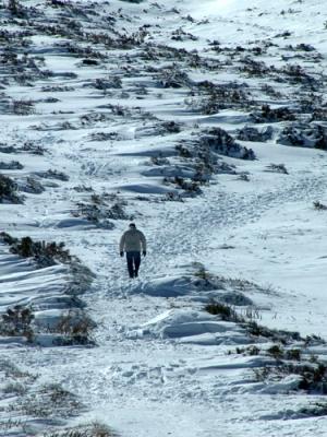 /Caminhando pela neve